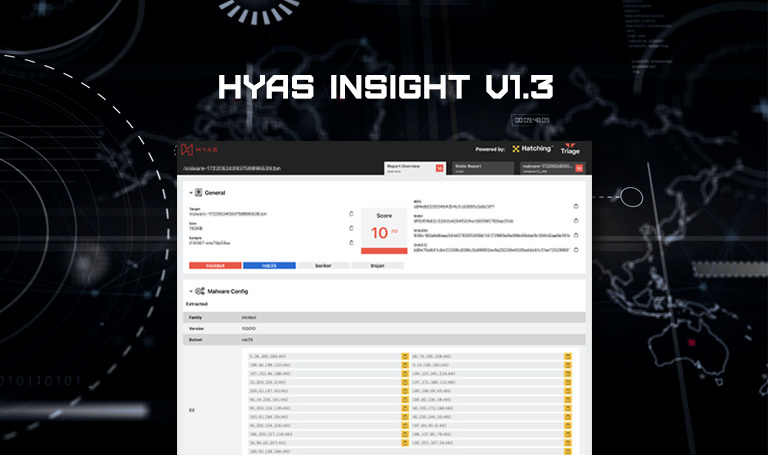 HYAS Insight: Detonating Malware, Understanding Adversary Command & Control